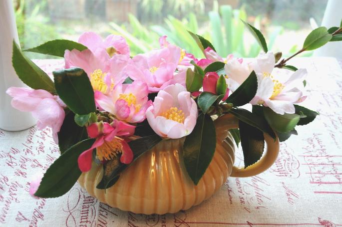 Bouquets de camélia 685x455