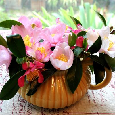 Je fais mon bouquet de Camélia