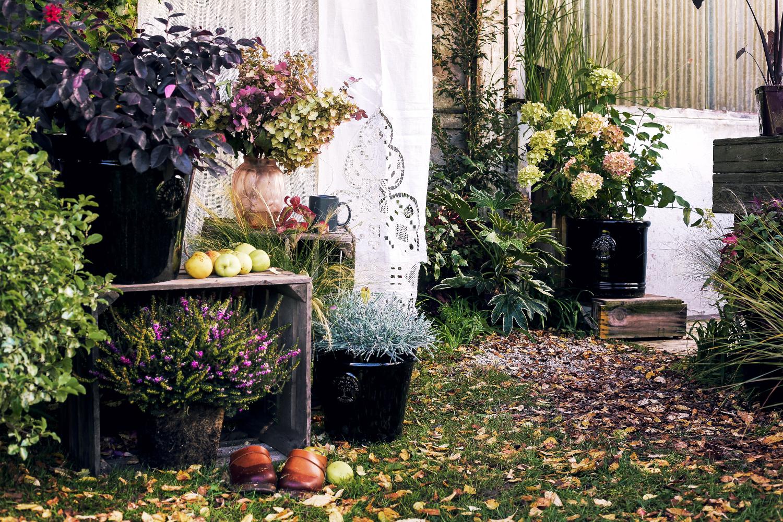 Inspiration Botanic Romance 46