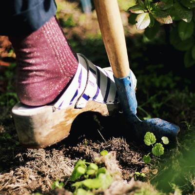 Plantation imfg-91_preview