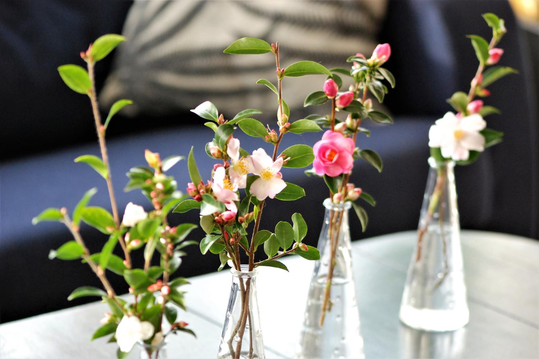 Bouquet de Camélias DSC_1772