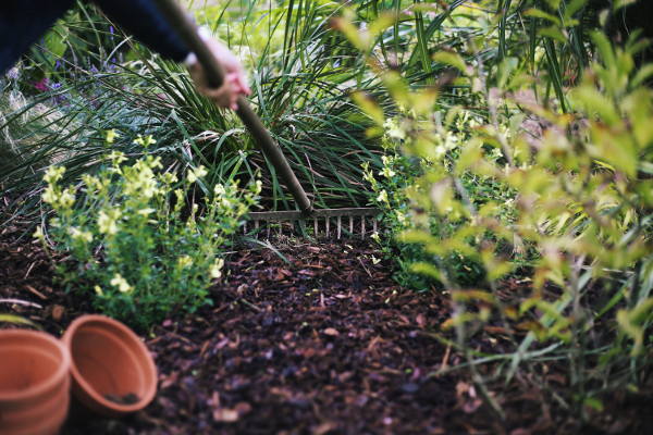 nettoyage du jardin au printemps