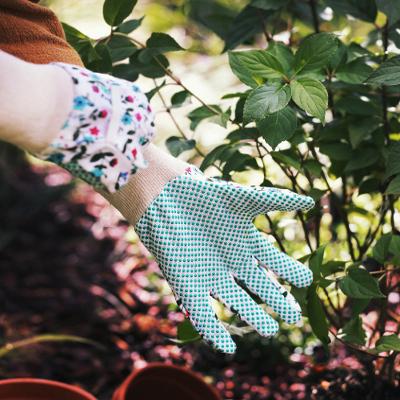 Les 5 astuces pour préparer votre jardin  à l'arrivée du printemps