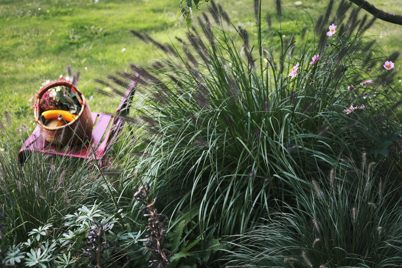jardin détente de thomas imfg-81