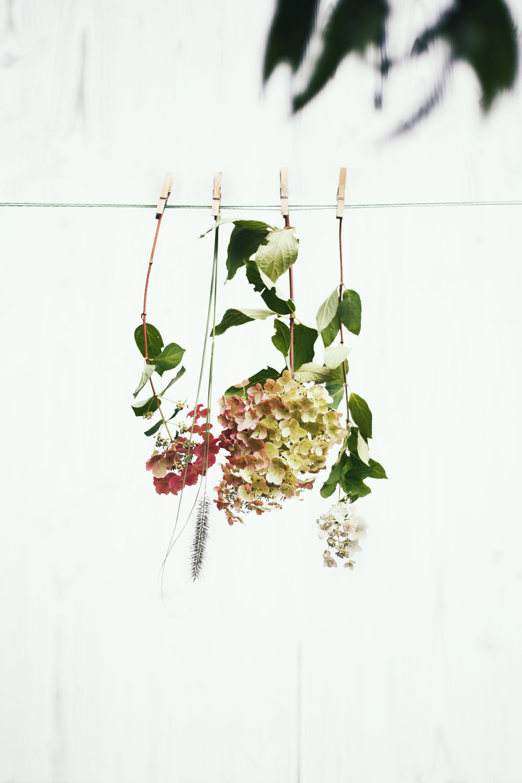 Bouquet hortensia imfg-11