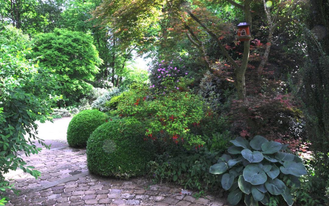 Portrait de Marité et Jean-Yves Roué, voyage au coeur des plantes…