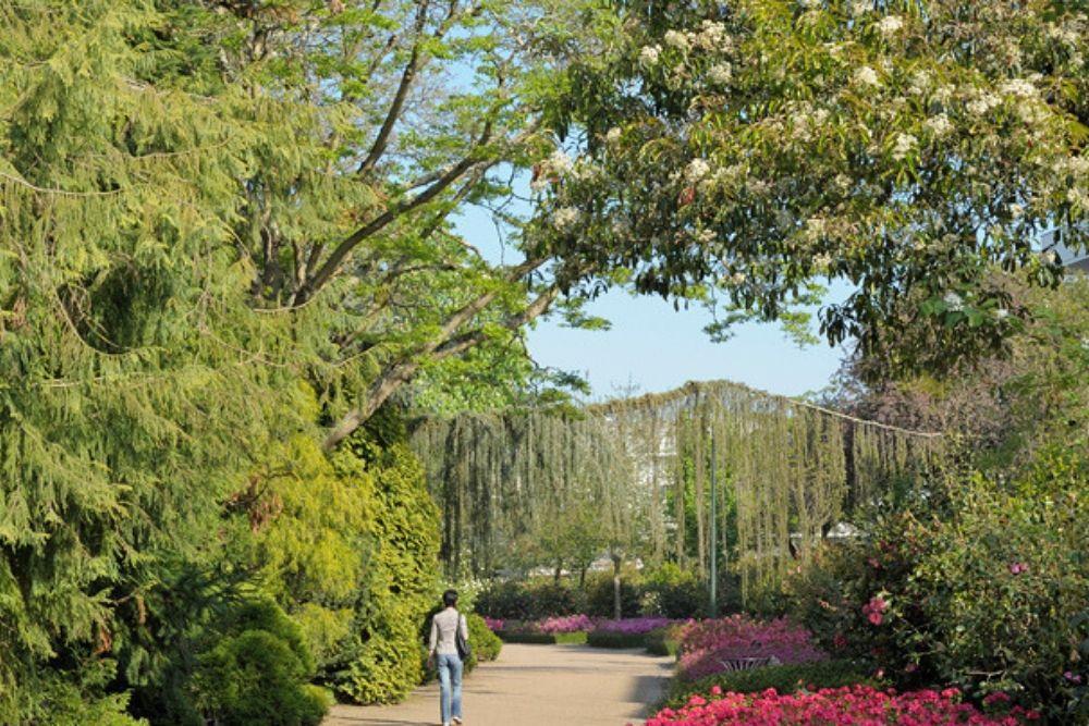 Jardin des plantes nantes 4
