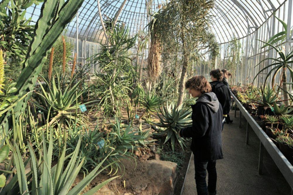 jardin des plantes nantes 1